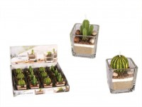 Cactus Candle - 12 pieces