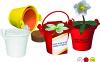 Christmas Rose in a Bucket 1000 items